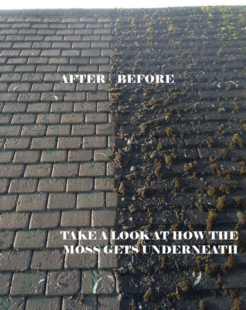 Roof Moss Removal In Cornwall